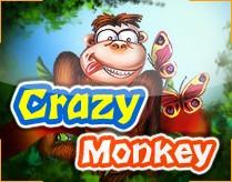 Craz monkey